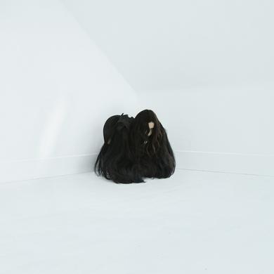 Chelsea Wolfe 'Hiss Spun' Vinyl Record