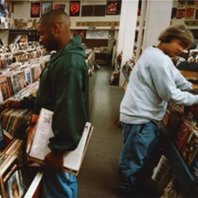 Dj Shadow Endtroducing Cover - Panoramic Poster