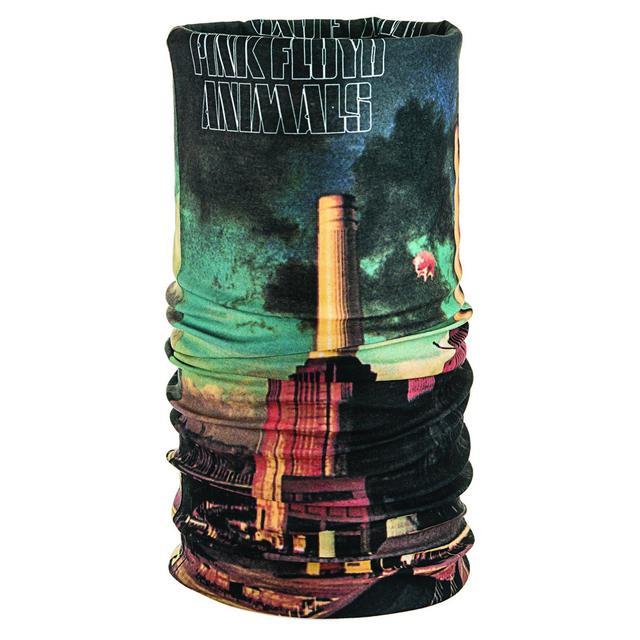 Pink Floyd Animals Tube