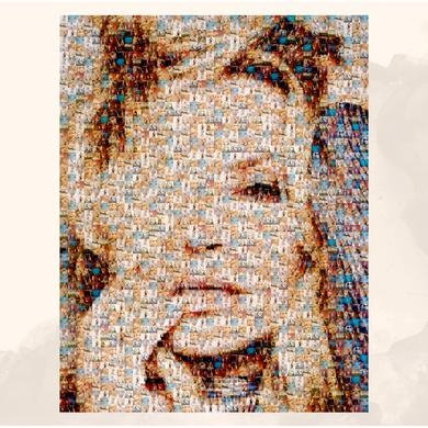 Anastacia A2 Exclusive Evolution Collage Poster