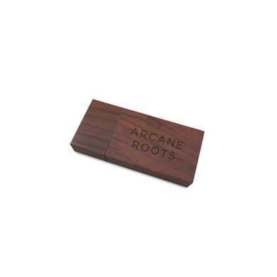 Arcane Roots Melancholia Hymns USB Album USB
