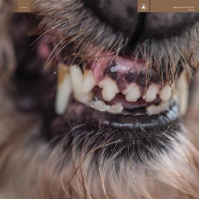 Blanck Mass World Eater CD Album CD