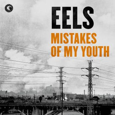 Eels Mistakes Of My Youth / A Good Deal 7-Inch Vinyl 7 Inch