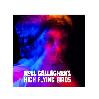 Noel Gallagher's High Flying Birds Tour Programme