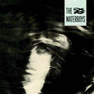 The Waterboys Heavyweight Vinyl LP Heavyweight LP