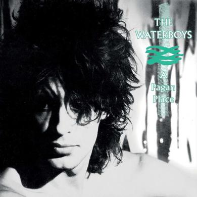 The Waterboys A Pagan Place Vinyl LP LP