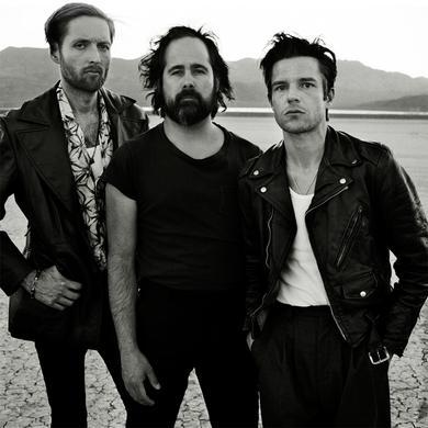 The Killers Desert Photo Poster