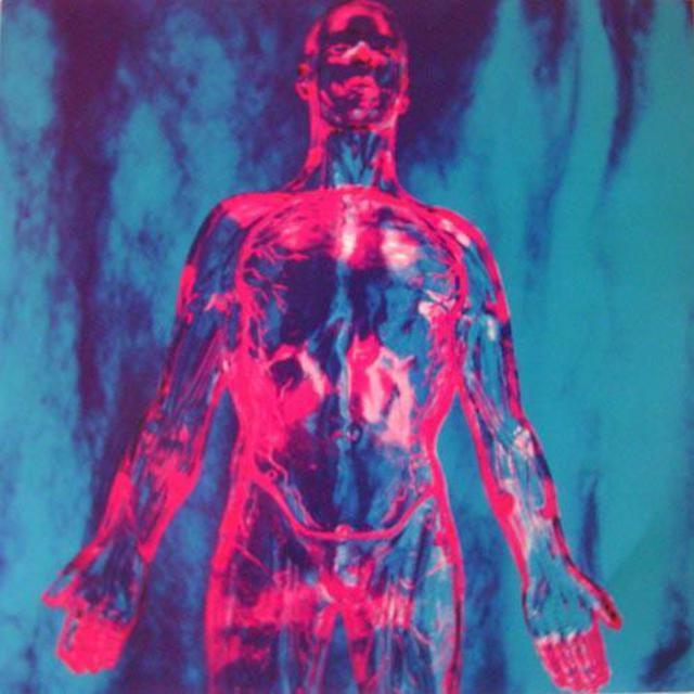 "Nirvana Sliver 7"""