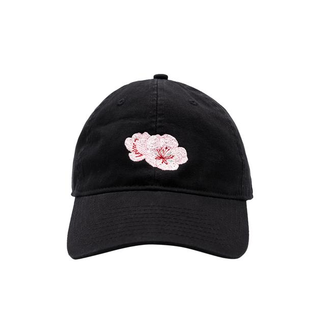 Shawn Mendes Festival Tour Dad Hat