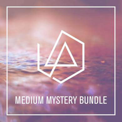 Linkin Park Medium Mystery Bundle