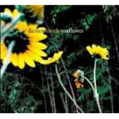 Darden Smith - Sunflower (CD)