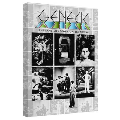 Genesis/Lamb Lies Down On Broadway-Canvas Wall Art With Back Board-White-[20 X 30]